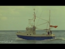 Последняя акула / L'ultimo squalo / Ryklys (1981)