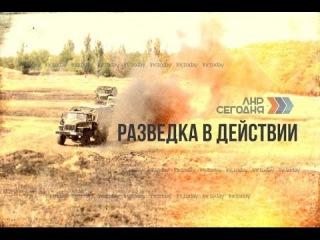 Разведка в действии / #ЛНРсегодня
