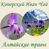 Копорский Иван Чай и алтайские травы!