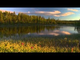 4 Seasons DVD - Relaxing Video Of Summer Scenery With Nature Sounds