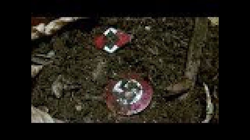 Sondeln. ( 26 ) Verlorene Dinge am Wegrand 1/6 Teil -- Treasure Hunting