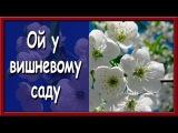 Укранська народна псня. Ой у вишневому саду