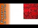 Букет роз Гран При Шкала щедрости. Количество роз указываете Вы! . Доставка цветов и подарков.