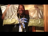 Snoop Dog and weed