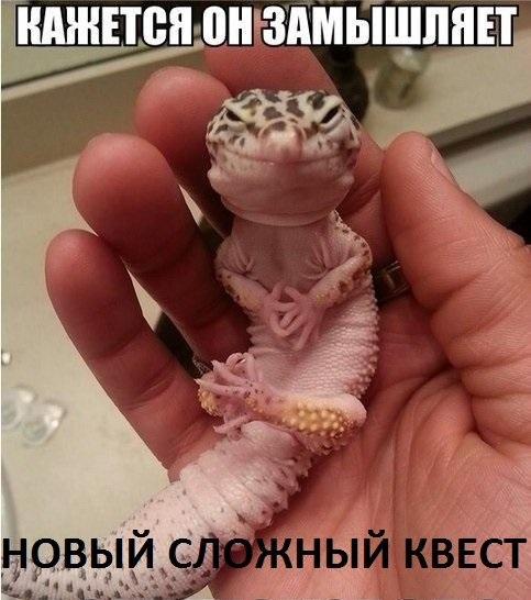 Shestoe Chuvstvo   Днепропетровск (Днепр)