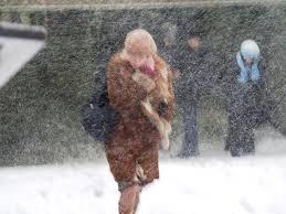 25 ноября на территории Псковской области прогнозируется облачная пого