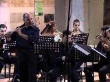 Domenico Cimarosa Concerto in Sol magg. per 2 flauti e orch.  13
