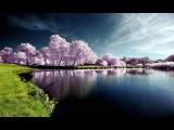 Очень красивая и спокойная музыка для души - Лучшая инструментальная музыка!!! Relax!!!
