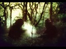 Wolves In The Throne Room- Astral Blood HD
