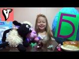 Буква Б - Азбука Развивающие игры для детей Giant Surprise Egg Letter Большое Яйцо с Сюрпризом