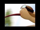 Короткометражный Мультфильм | Киви