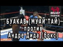 Буакав Муай Тай проти Андре Дида бокс - очень жесткий бой