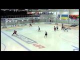 Хоккей, чемпионат Украины. 15 тур.