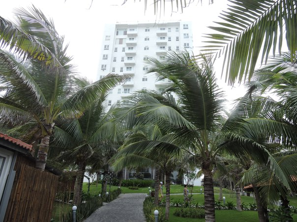 Отель Dessole Sea Lion Beach Resort