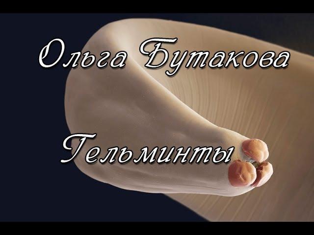 Ольга Бутакова. Гельминты, бактерии, грибы.