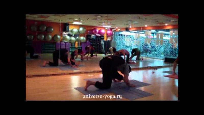 Универсальная Йога. Тренировка 1 Мандала