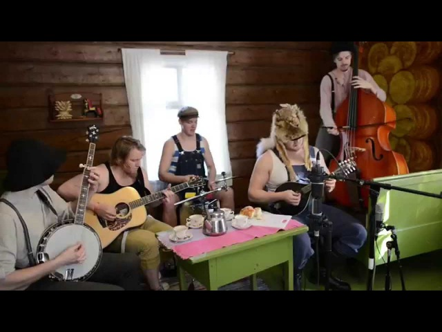 Seek And Destroy by Steve'n'Seagulls LIVE
