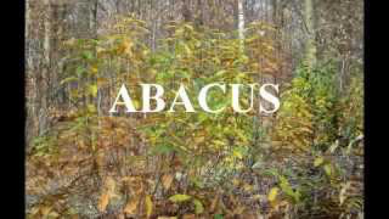 ABACUS for solo guitar EMR 18741 Colette Mourey Editions Marc Reift