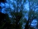 Музыка и кадры из фильма Робин из Шервуда.wmv