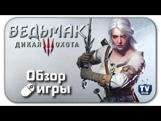 Видео обзор геймплея игры Ведьмак 3: Дикая Охота (The Witcher 3: Wild Hunt) на PC (отзыв, 2015)