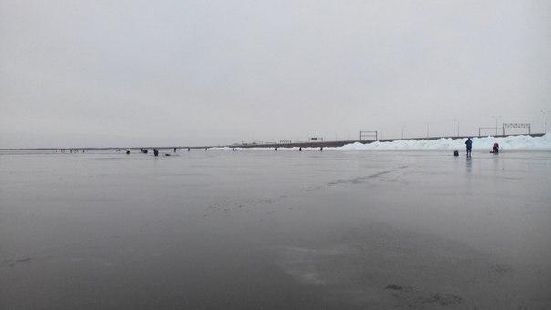рыбалка на дамбе в спб в 2016 году