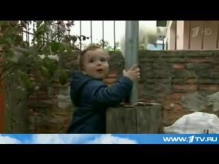 В Бразилии ядовитая змея скончалась от укуса маленького мальчика