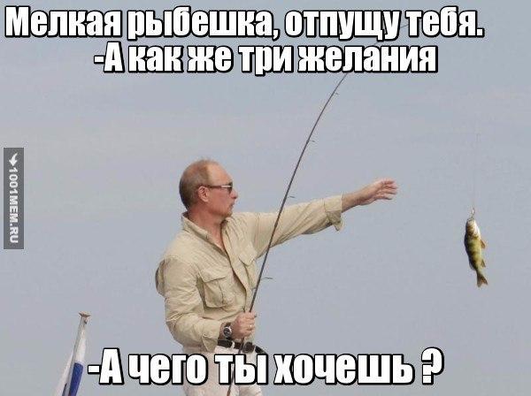 http://cs627626.vk.me/v627626771/27303/7f9Dn3SPOOo.jpg