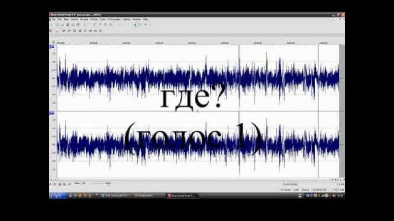 Электронный голосовой феномен (ЭГФ)