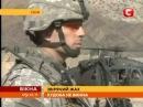 Американским солдатам разрешили зоофилию