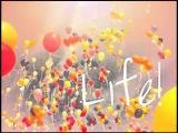 MIIA - Celebrate Your Life