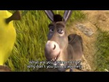 Shrek - That's what friends are for