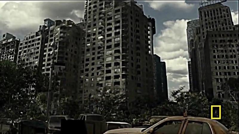 Будущее планеты: Жизнь после людей — научно-популярный фильм,что произойдёт с нашей планетой, животными и растениями