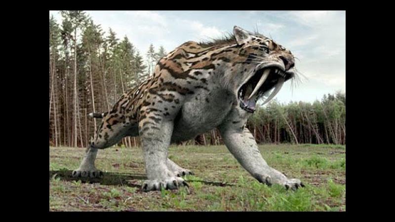 Самые свирепые из хищников ледникового периода.Затерянные миры