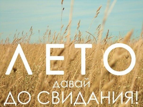 СБУ перекрыла канал вывода валюты за границу - Цензор.НЕТ 7303
