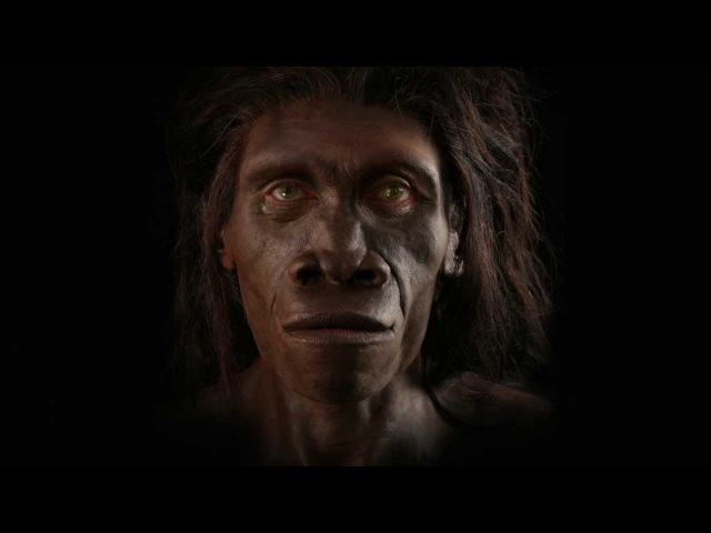Shaping Humanity How Science, Art, and Imagination Help Us Understand Our Origins [Full Teaser]