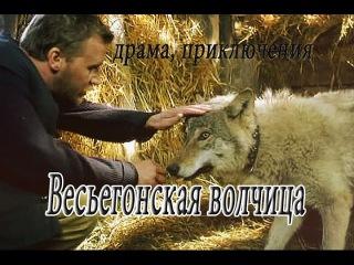 Весьегонская волчица фильм драма приключения Vesegonskaja volchica film drama prikljuchenija