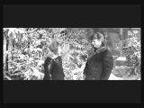 Старый клен (песня из кинофильма