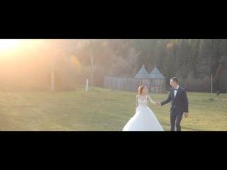 Yulia & Denys | Wedding Highlights