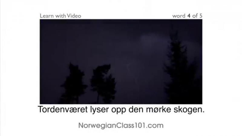 Norsk med video - Have Your Norwegian Skills Been Declared a Natural Disaster!