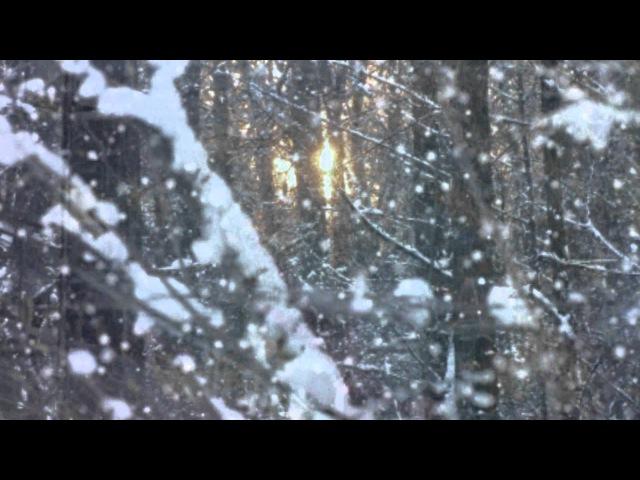 Белым снегом в исп.Владимир Захаров и группа Рок Острова с русской песней Белым...