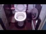 Приучаю кошку к унитазу своим методом Accustom the cat to the toilet by his method