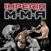Официальная группа MMA IMPERIA