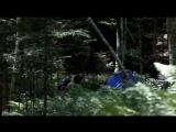 Лес призраков (2016 ужасы)