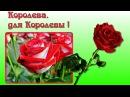Зима и розы..Для тебя!