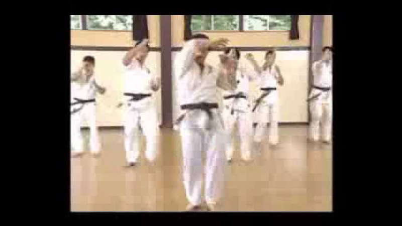 Dai-do Juku Karate Vol 1