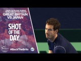 Davis Cup shot of the day - Andy Murray