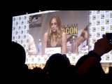 Legends of Tomorrow Brandon Routh Wentworth Miller Talk Show SDCC Hall H San Diego Comic-Con