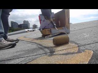 Американский художник Марлин Петерсон пишет гигантских пауков на крышах.