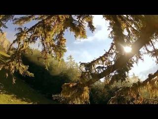 Dapa Deep - One Life (Radio Edit)