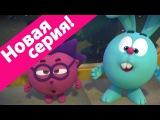 Пин-код - 2015 - Дружебин HD (Смешарики - познавательные мультики для детей)